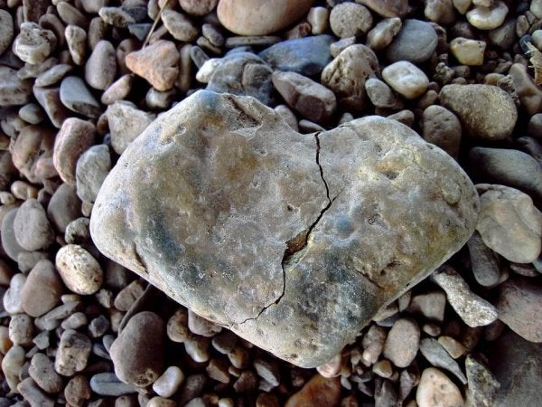 A heart-shaped rock.