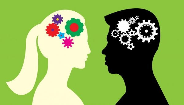 Are There Differences Between the Male and Female Brain?