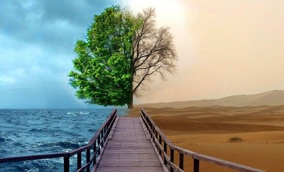 4 Keys of Gestalt Therapy to Treat Depression