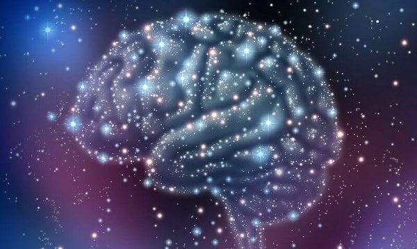 오르가즘이 일어나는 동안, 뇌에서 일어나는 일은 무엇일까? 02