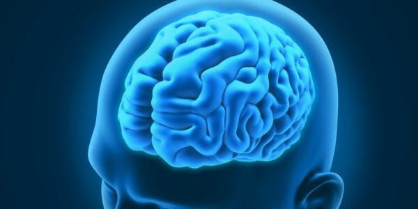 3 Interesting Neurological Disorders