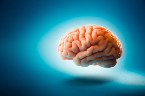 A floating brain: neurological disorders.