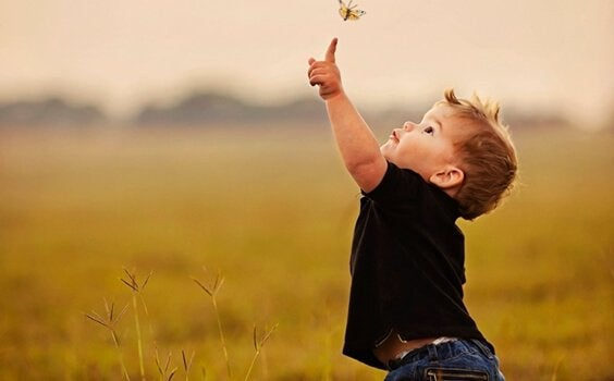 Boy touching butterfly