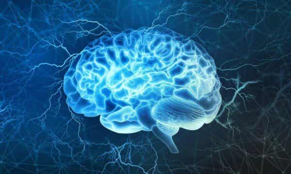 The brain lighting up.