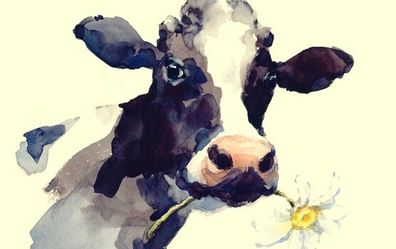 The Story of the Cow: When Routines Limit Us