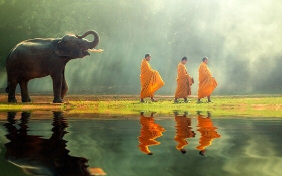 buddhist-monks-walking