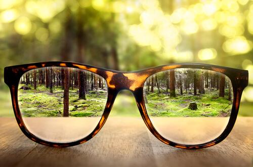 Perspective: glasses in a forest.