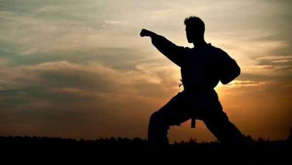 Philosophy in martial arts.
