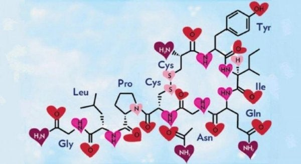 The chemical composition of oxytocin.