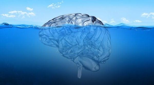 Submerged brain