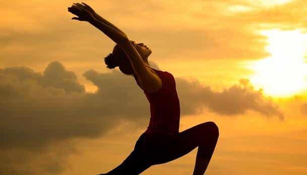 Seitai: the Culture of Harmony and Health