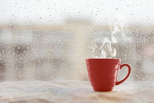 A hot mug in a cold rainy window.