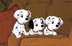 101 dalmatians, a great movie about animals