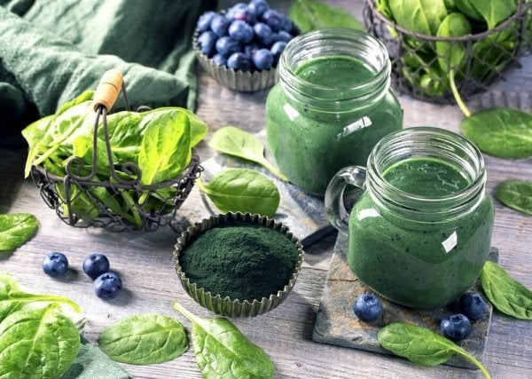 5 Benefits of Spirulina for Your Brain