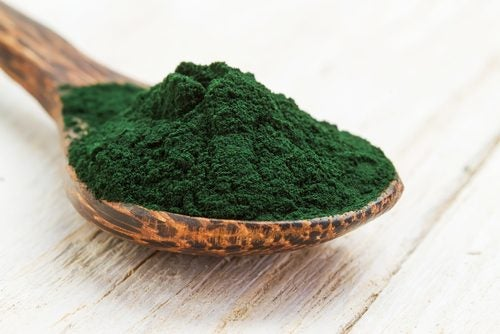 spoonful of powder spirulina
