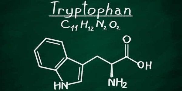Tryptophan.