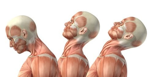 Take care of your neck: exercise