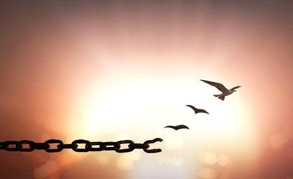 Forgiveness sets you free