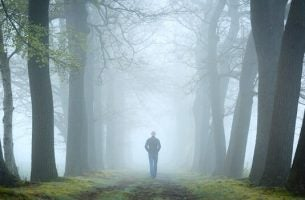 The forest test and psychoanalysis