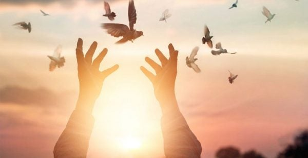 hands-opening-up-to-set-birds-free