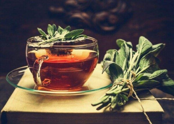 benefits of salvia in tea