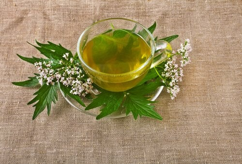 Valerian Root tea can aid sleep