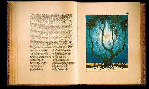 Carl Jungova knjiga.