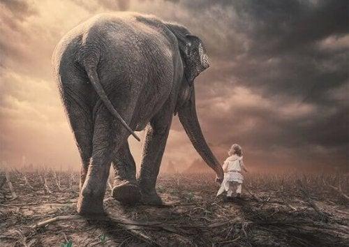 An elephant and a kid.