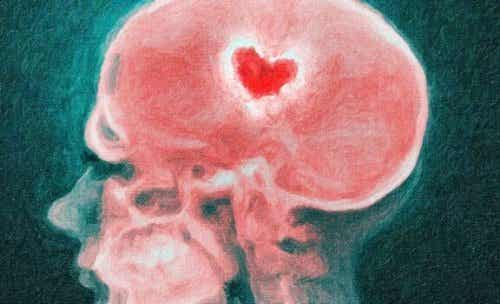Your Brain During a Breakup: The Science of a Broken Heart