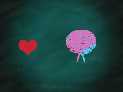 Illustration of a mind and a heart.