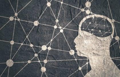 Web inside someone's mind.