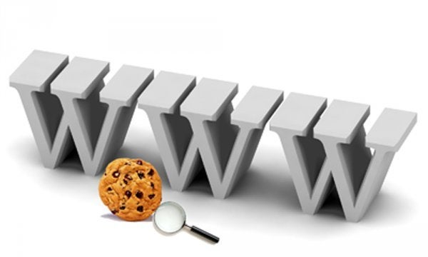 World wide web acronyms and cookies.