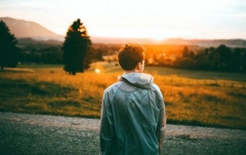 A boy in a field facing the sunset.