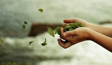 Some hands throwing leaves.