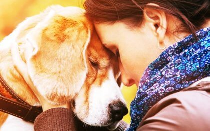 Why We Come to Love an Animal so Much