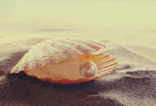 Oyster with a pearl and the wisdom of persian love proverbs.