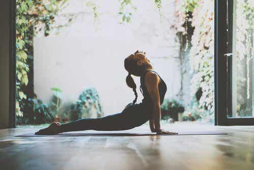 Stimulating the Vagus Nerve Improves Overall Health