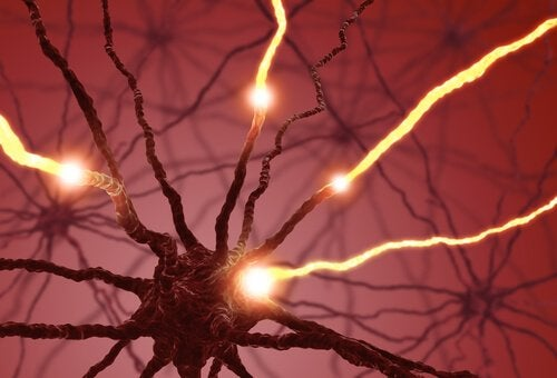 Electric impulses in neurons.