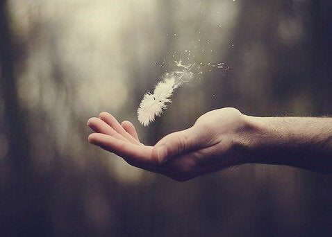 This feather in hand represents a grasp of aesthetic intelligence.