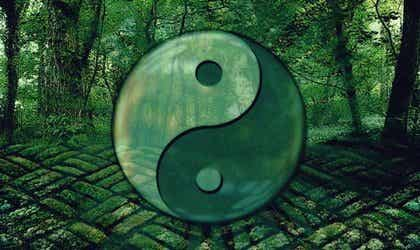 7 Laozi Quotes to Help You Evolve