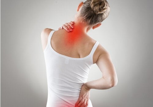 4 Exercises for Back Pain and Posture