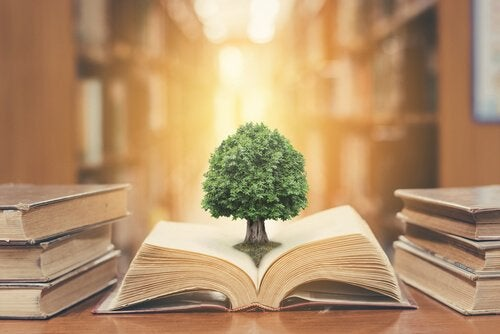Book with a tree.
