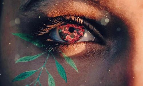 An eye with flowers sprouting out of it.