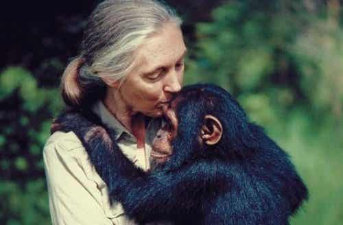 Five Jane Goodall Quotes to Reflect on