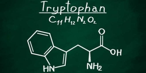 Chemical formula of tryptophan.