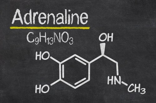 The chemical structure of adrenaline.