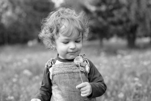 A boy holding a dandelion.