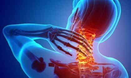 Nociceptors: All about Pain Receptors