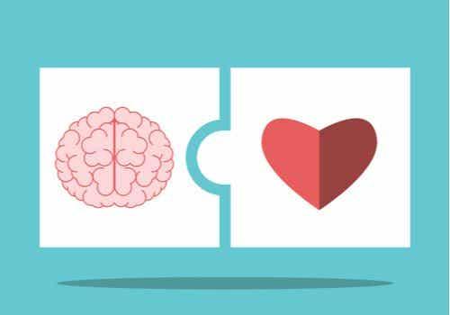 Salovey and Mayer's Emotional Intelligence Theory