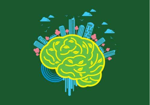 Neuroarchitecture: The Environment's Power Over the Brain